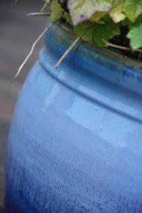 The Blue Pot