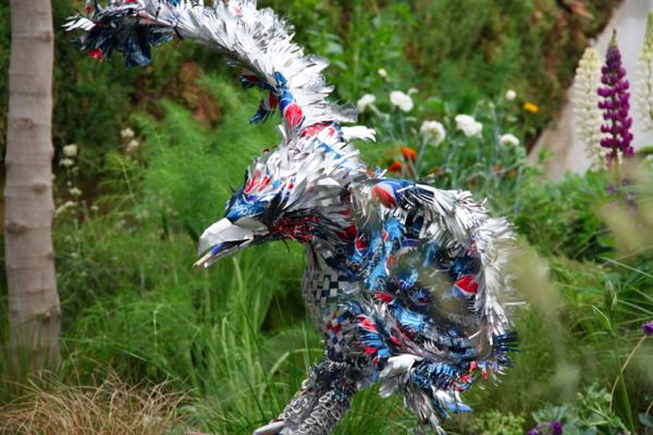 Pepsi Can Eagle